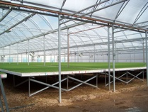 consulant of greenhouse structures